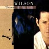 Brian Wilson (Deluxe Edition) (2000)