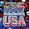 Now That's What I Call the USA: The Patriotic Country Collection (2010)